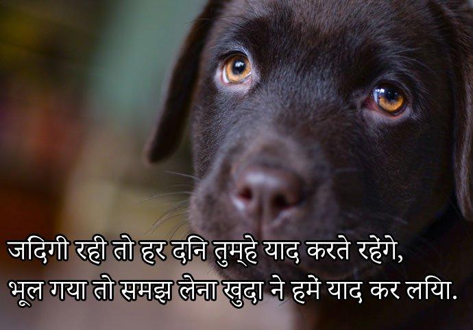 Free Downlaod Sad WhatsApp DP in Hindi