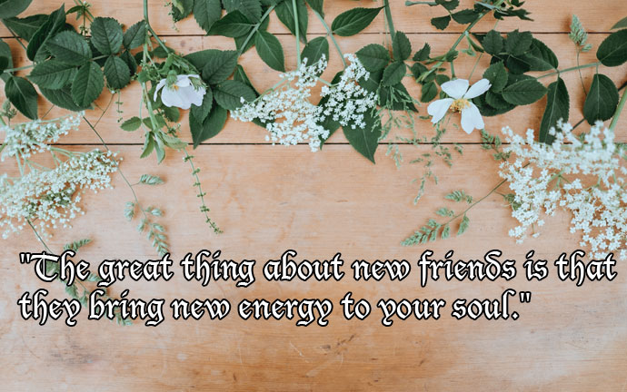 The Great Things about new friends quote